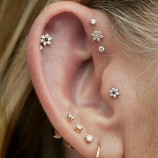 Ear Piercing Course